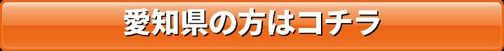 愛知県の方はコチラ
